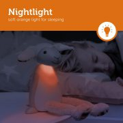 FIN_Grey_2_Nightlight-LR_preview