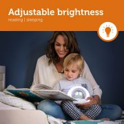 LOU_Grey_2_Adjustable-brightness-LR_preview