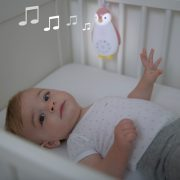 ZOE-music-and-light