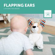 DANNY_5_Flapping-ears-LR